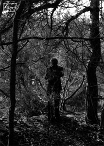 « Le photographe », Emilie Traverse